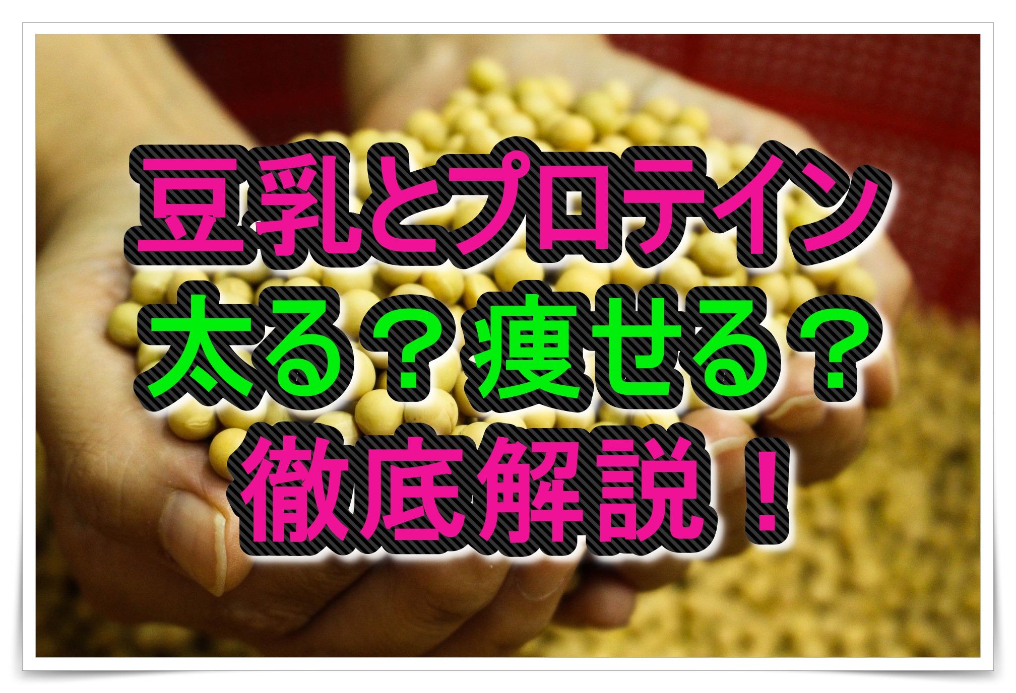 豆乳とプロテインはダイエットの敵か味方か!徹底解説!