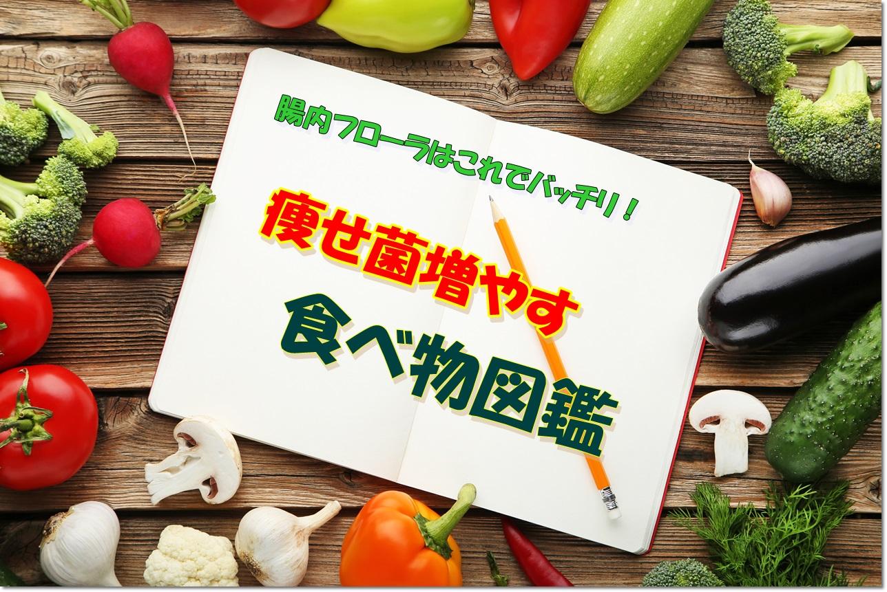 痩せ菌増やす食べ物図鑑|生きた痩せ菌食材5選&お助け食材|